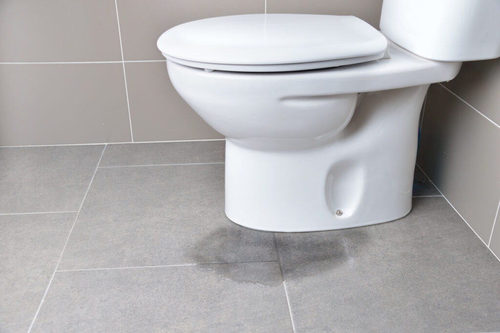 Why You Should Have Your New Toilets Professionally Installed